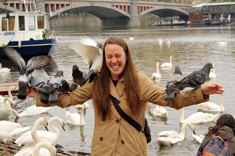 В лебединой гавани много голубей.
