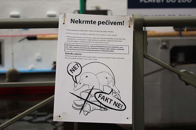 Табличка, на которой просят не кормить птицу хлебом.