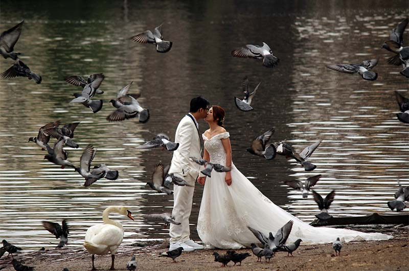 Вот такую фотографию можно сделать, если прикормить голубей, а потом их вспугнуть.