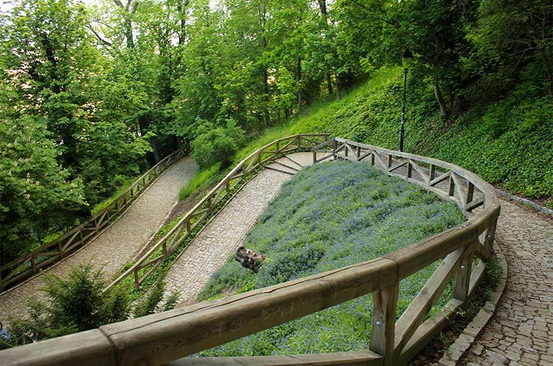 Извилистые дорожки в парке Кинских.