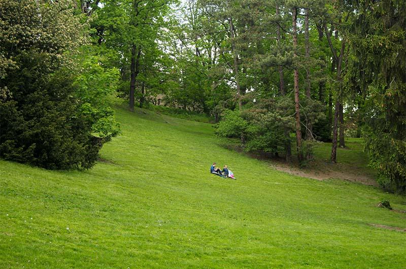 Здесь можно отдыхать прямо на газоне.